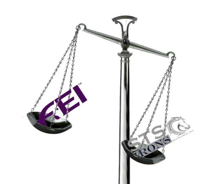 FEI COULD FACE $20 MILLION DOLLAR LAWSUIT