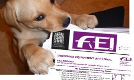 FEI SCANDALS AND COVER-UP  THE DOG ATE THE REPORTS