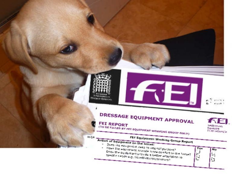 FEI SCANDALS AND COVER-UP |THE DOG ATE THE REPORTS